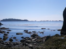 Ucluelet Harbour Kayaking